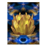 A gold lotus flower and reflections postcards