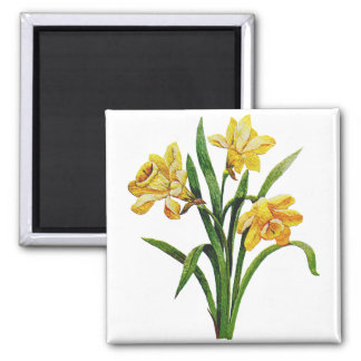 A Golden Host of Embroidered Daffodils 2 Inch Square Magnet