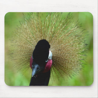 A Good Feather Day Mouse Pad
