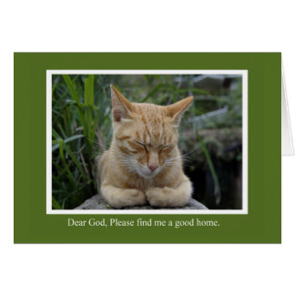 A Good Home Animal Notecards Card
