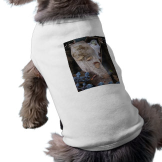 A Grave Ghoul on Halloween - photograph Pet T Shirt