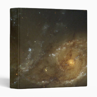 A Grazing Encounter Between Two Spiral Galaxies 3 Ring Binder