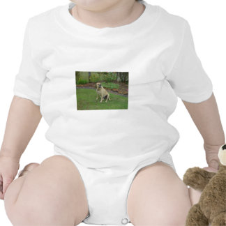 A Great Big Lovable Puppy Named Zac T-shirt
