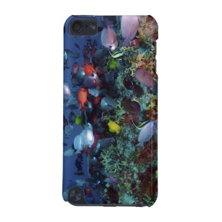 A Great Diversity of Fish at Pearl & Hermes Atoll iPod Touch 5G Cases
