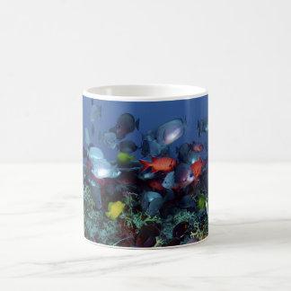 A Great Diversity of Fish at Pearl & Hermes Atoll Coffee Mug