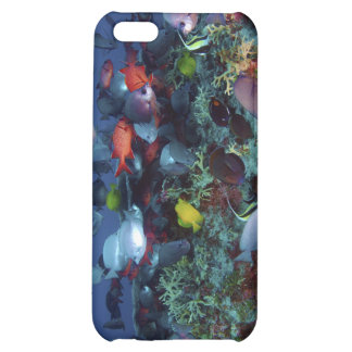 A Great Diversity of Fish at Pearl & Hermes Atoll iPhone 5C Cases