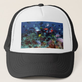 A Great Diversity of Fish at Pearl & Hermes Atoll Trucker Hat