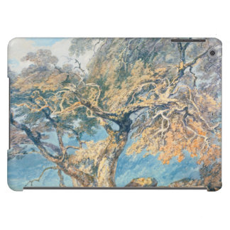A Great Tree Joseph Mallord William Turner art Cover For iPad Air
