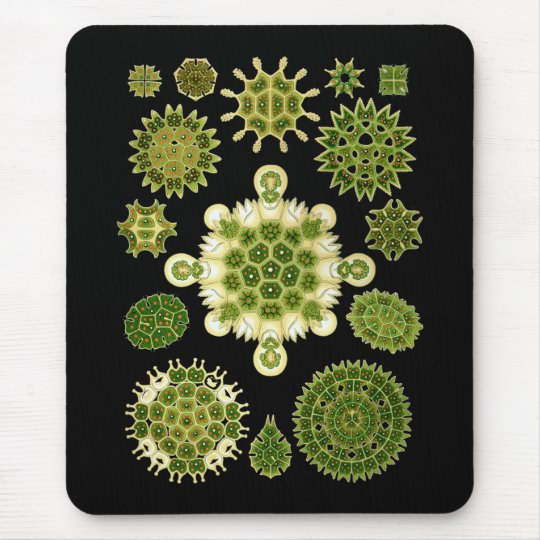 A Green Algae Mouse Pad
