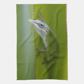 A green anole is an arboreal lizard hand towel