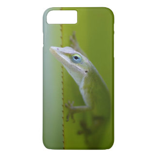 A green anole is an arboreal lizard iPhone 8 plus/7 plus case
