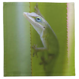 A green anole is an arboreal lizard printed napkins