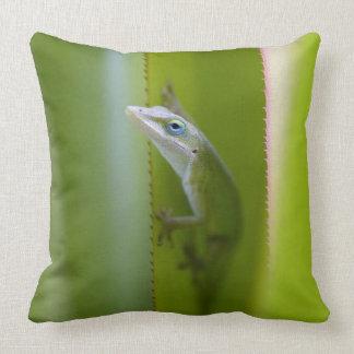 A green anole is an arboreal lizard throw pillow