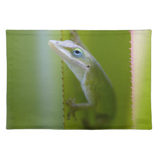 A green anole is an arboreal lizard placemats