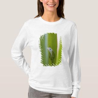 A green anole is an arboreal lizard T-Shirt