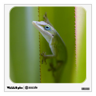 A green anole is an arboreal lizard wall decal
