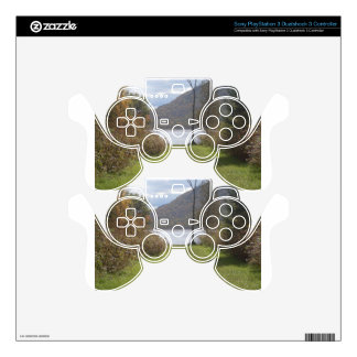 A green path. PS3 controller decal