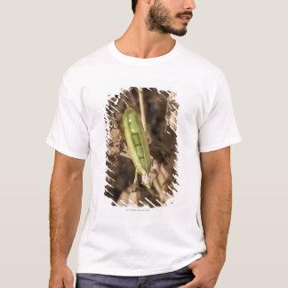 A Green Pea Pod On A Dried Pea Pod Plant T-Shirt