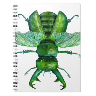 A Green Stag Beetle Notebook