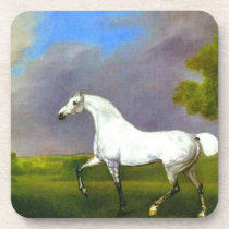A Grey Horse by George Stubbs Drink Coaster