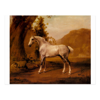 A Grey Stallion In A Landscape by George Stubbs Postcard