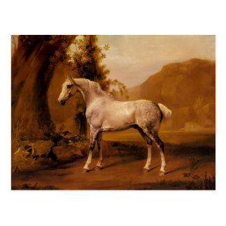 A Grey Stallion In A Landscape by George Stubbs Postcard