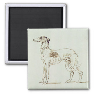 A Greyhound, Facing Left (pen & ink on paper) Magnet