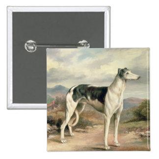 A Greyhound in a hilly landscape Button