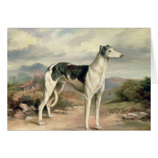 A Greyhound in a hilly landscape Greeting Card