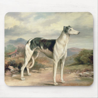 A Greyhound in a hilly landscape Mousepads