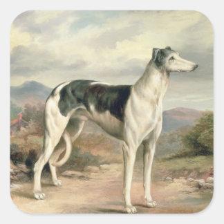 A Greyhound in a hilly landscape Sticker