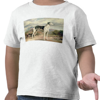 A Greyhound in a hilly landscape Tee Shirt