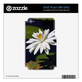 A Groovy Kinda Love iPod Touch 4G Skins