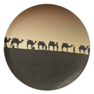 A group of camel herders with their camels at dinner plate