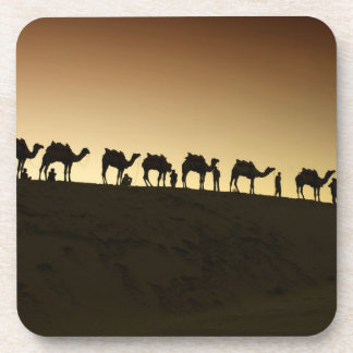 A group of camel herders with their camels at drink coaster