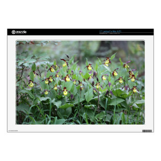 """A group of ladys slipper orchids 17"""" laptop decal"""