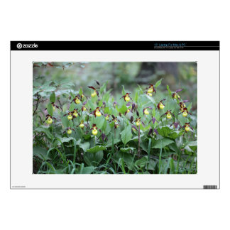 A group of ladys slipper orchids skin for laptop