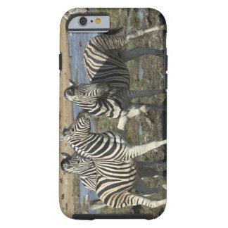 A group of Plains Zebra (Equus qagga) greet each Tough iPhone 6 Case