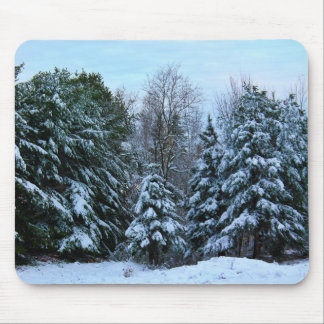 A Grove Of Snow Laden Pine Trees Mouse Pad
