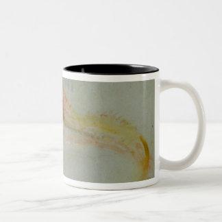 A Gurnard Two-Tone Coffee Mug