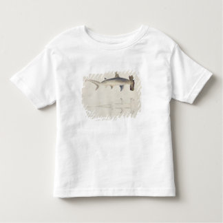 A Hammer-headed Shark, Loheia, formerly attributed Toddler T-shirt