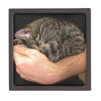 A Handful of Sleepy Keepsake Box