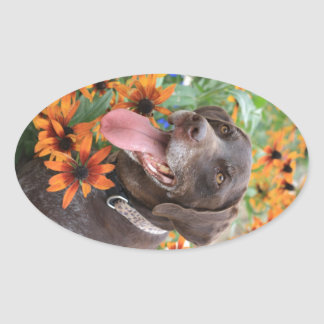 A happy German Shorthaired Pointer with sunflowers Oval Sticker