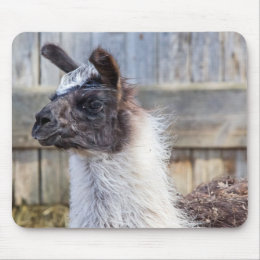 A Happy Llama Mouse Pad