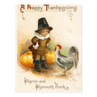 A Happy Thanksgiving Pilgrim and Plymouth Rock Postcard