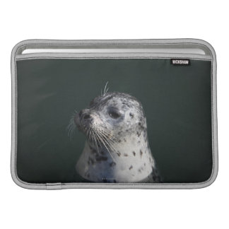 A harbor seal sleeve for MacBook air
