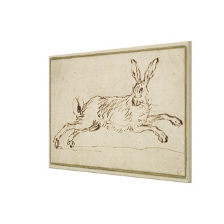 A Hare Running, With Ears Pricked (pen & ink on pa Canvas Print