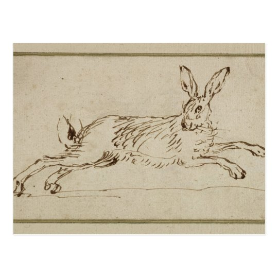 A Hare Running, With Ears Pricked (pen & ink on pa Postcard