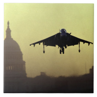 A Harrier jet landing on the Mall at dawn with Tile