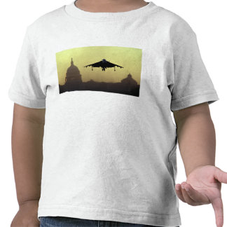 A Harrier jet landing on the Mall at dawn with Tshirts